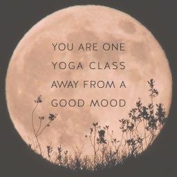 More yoga & a run