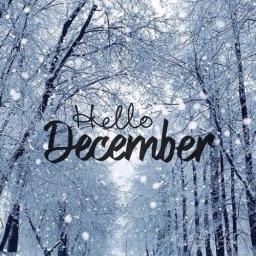So long November